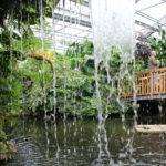Litzelstetten (D) – Insel Mainau im Schmetterlingshaus