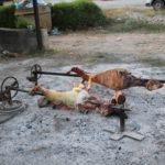 Auf dem Weg durch Albanien (AL) – Lammbraten am Wegesrand