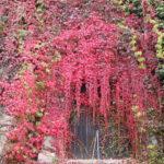 Marburg (D) – auf dem Weg zum Marburger Schloss