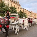 Krakau (PL) – in der Altstadt – auf dem Hauptmarkt