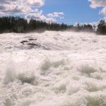 Storforsen (S) – Die Stromschnellen des Flusses Piteälven
