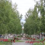 Umeå (S) – Die Birkenallee